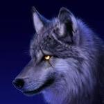 wolfmaster20